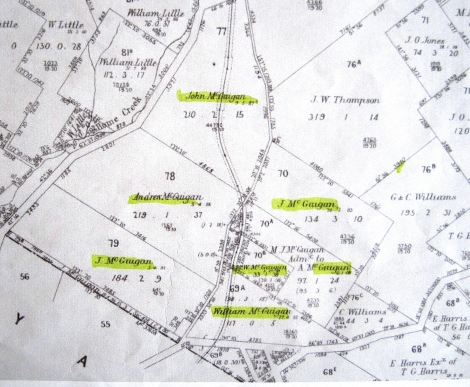 Parish map from McGuigans Road