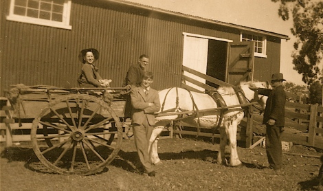 Max, Colin, Alan aka Pete (standing), Uncle Will holding Snow the cart horse. ca 1944